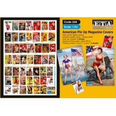 American pin-up magazines 1/24