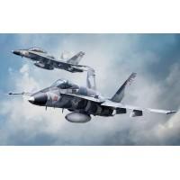 F/A-18A/D Agressor 1/48