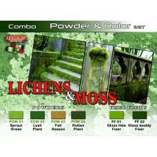 Lichens & moss Lifecolor