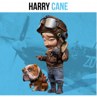 Harry Cane egg plane