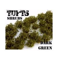 Shrub tuft dark green Plants