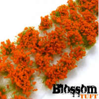 blossom tuft orange Plants