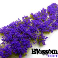 blossom tuft purple Plants