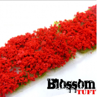 blossom tuft red Plants