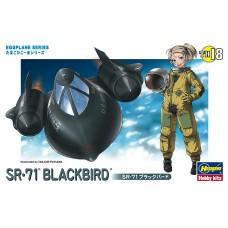 SR-71 Blackbird egg plane
