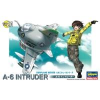 A-6 Intruder egg plane