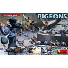 Pigeons 1/35