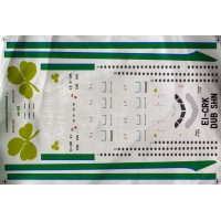 A330-300 Aer Lingus Decals 1/144