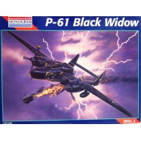 P-61 Black Widow 1/48